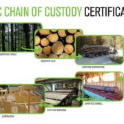 certificado de madera